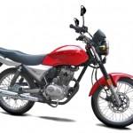 Moto Traxx Work 125